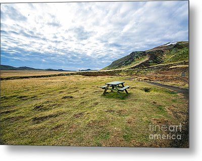 Picnic On Another Planet Metal Print by Will Cardoso