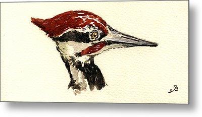 Pileated Woodpecker Head Study Metal Print by Juan  Bosco