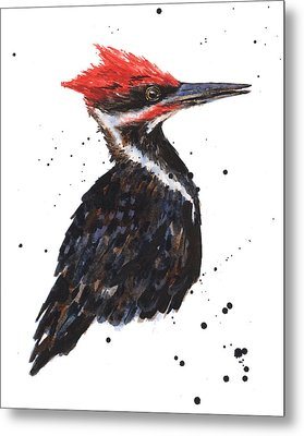 Pileated Woodpecker Watercolor Metal Print by Alison Fennell