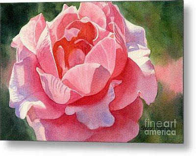 Pink And Orange Rose Blossom Metal Print by Sharon Freeman