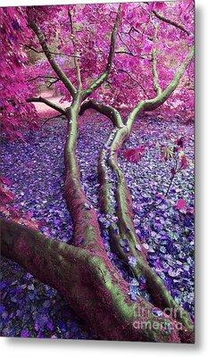 Pink Autumn Metal Print by Sally Barnett
