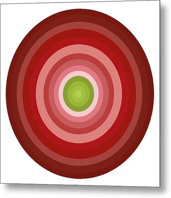 Pink Circles Metal Print by Frank Tschakert