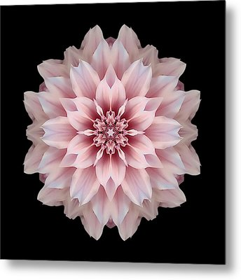 Pink Dahlia Flower Mandala Metal Print by David J Bookbinder