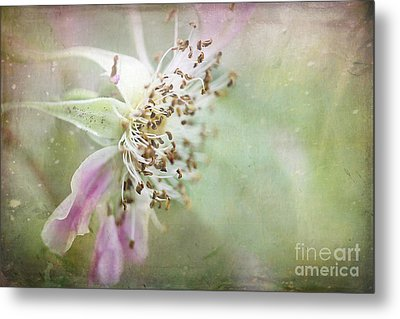 Pink Impression Metal Print by Teresa Zieba