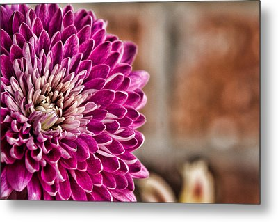 Pink Mum Metal Print by Lana Trussell