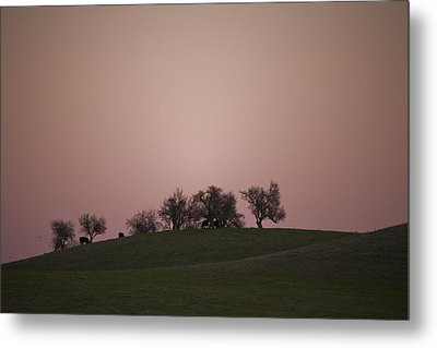 Pink Twilight Metal Print by Joel Moranton