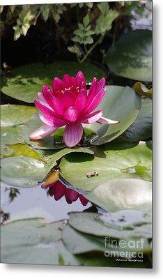 Pink Water Lily Metal Print by Tannis  Baldwin