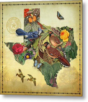 Plant Map Of Texas Metal Print by Gary Grayson
