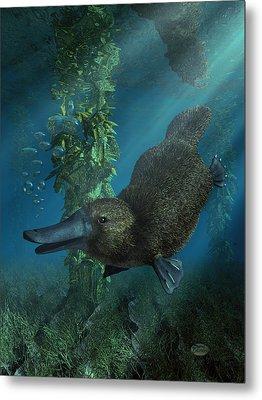 Platypus Metal Print by Daniel Eskridge