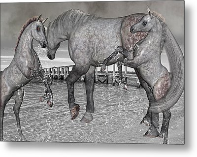 Playful Inspirations Metal Print by Betsy C Knapp