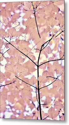Plum Cream Leaves Melody Metal Print by Jennie Marie Schell