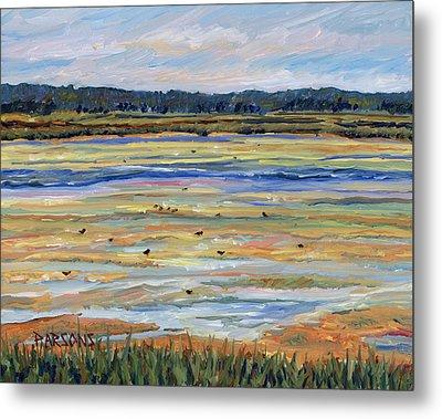 Plum Island Salt Marsh Metal Print by Pamela Parsons