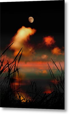Pointing At The Moon Metal Print by Mal Bray