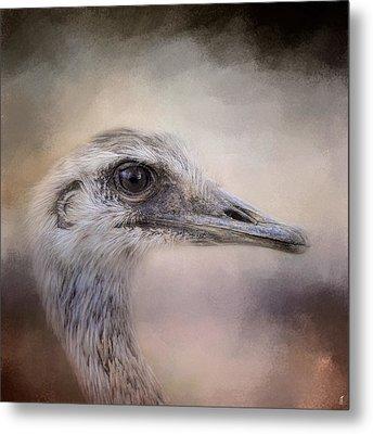 Poised - Ostrich - Wildlife Metal Print by Jai Johnson