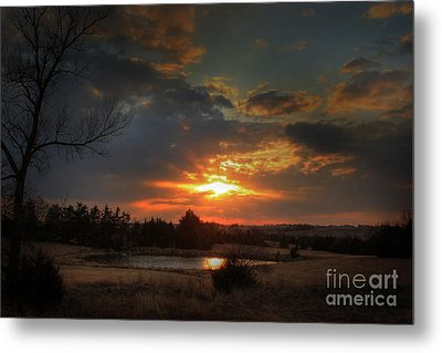 Pond Metal Print by Thomas Danilovich