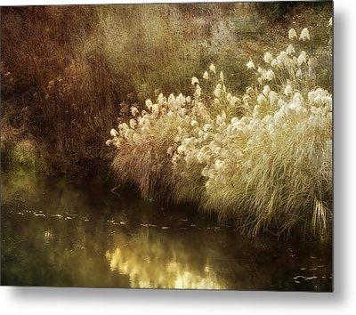 Pond's Edge Metal Print by Julie Palencia