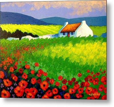 Poppy Field - Ireland Metal Print by John  Nolan