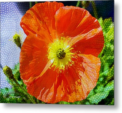 Poppy Series - Opened To The Sun Metal Print by Moon Stumpp