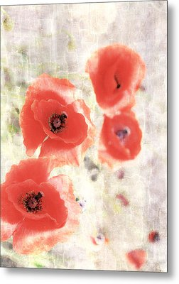 Poppy Three Metal Print by JC Photography and Art