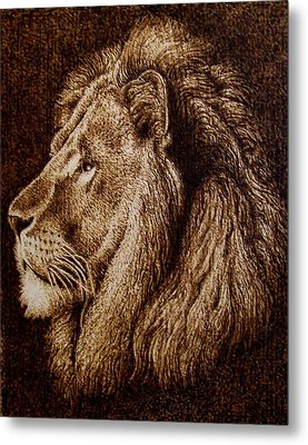 Portrait Of A Lion Metal Print by Cara Jordan