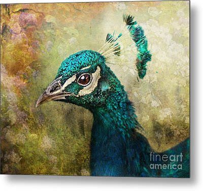 Portrait Of A Peacock Metal Print by Pauline Fowler