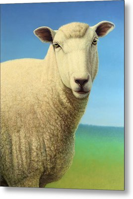 Portrait Of A Sheep Metal Print by James W Johnson