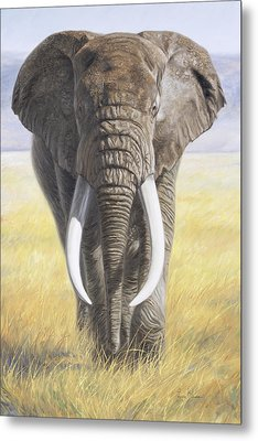 Power Of Nature Metal Print by Lucie Bilodeau