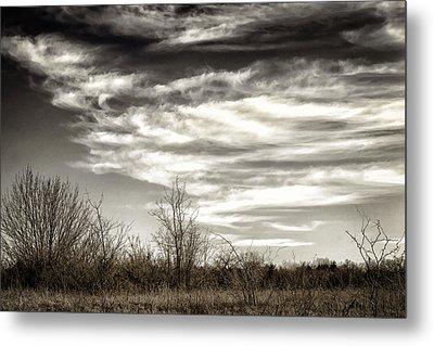 Prairie Winter Sky Metal Print by Joan Carroll