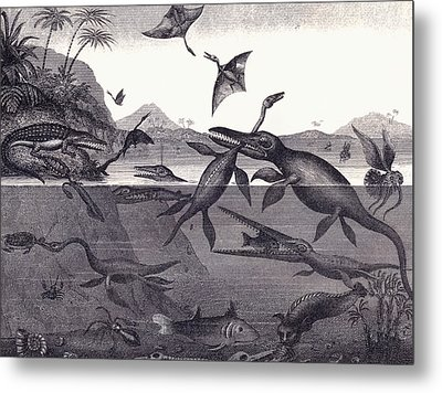 Prehistoric Animals Of The Lias Group Metal Print by English School