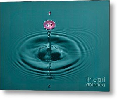 Pretty Liquid Pink Hat Metal Print by Susan Candelario