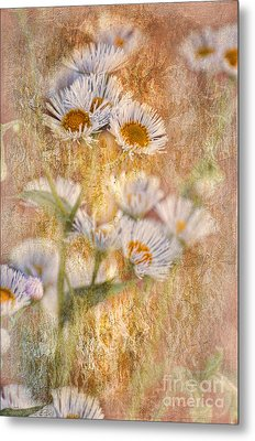 Pretty Little Weeds IIi Metal Print by Debbie Portwood