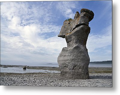 Proud Rock Metal Print by Arkady Kunysz