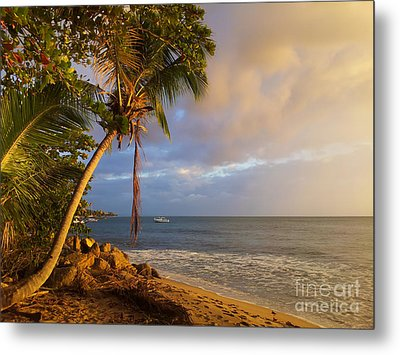 Puerto Rico Palm Lined Beach With Boat At Sunset Metal Print by Jo Ann Tomaselli