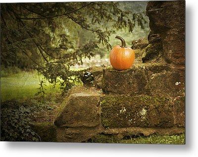Pumpkin Metal Print by Amanda Elwell