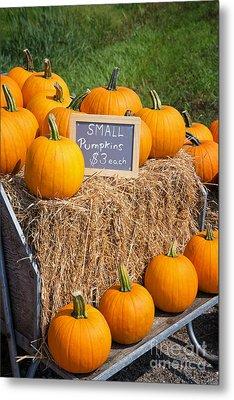 Pumpkins For Sale Metal Print by Jane Rix