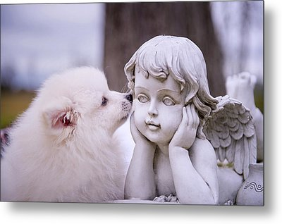 Puppy And Angel  Metal Print by Bonnie Barry