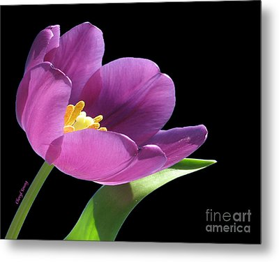 Pure Beauty Metal Print by Cheryl Young