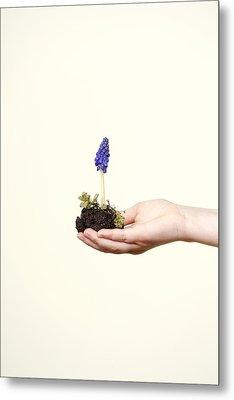 Purple Flower Metal Print by Joana Kruse