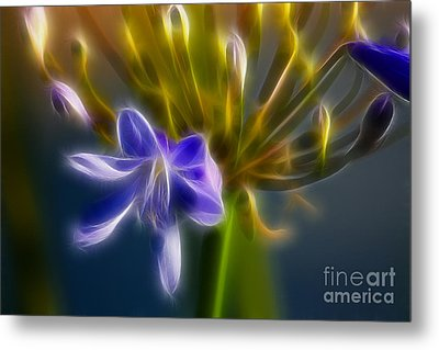 Purple Passion 6318-fractal Metal Print by Gary Gingrich Galleries