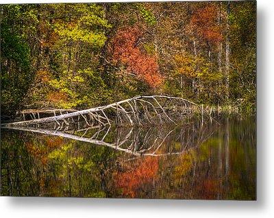 Quiet Waters In Autumn Metal Print by Debra and Dave Vanderlaan