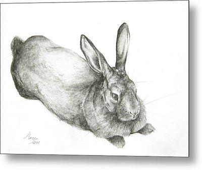 Rabbit Metal Print by Jeanne Maze