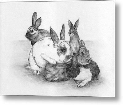 Rabbits Rabbits And More Rabbits Metal Print by Nan Wright