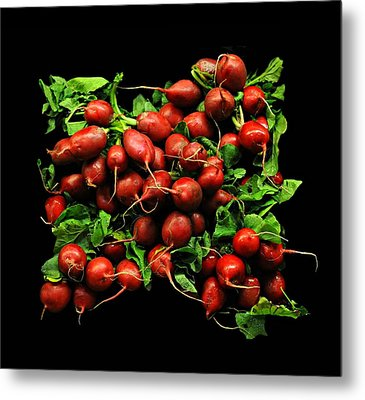 Radishes  Metal Print by Diana Angstadt