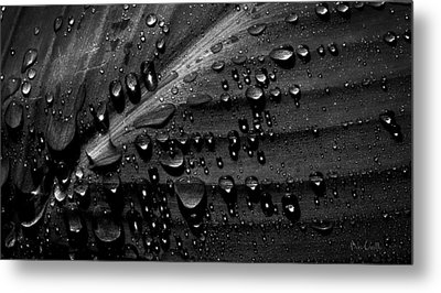 Rain Metal Print by Bob Orsillo