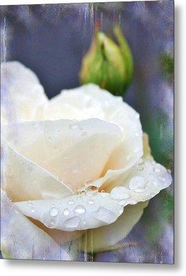 Rain Drops On Roses Metal Print by Cathie Tyler