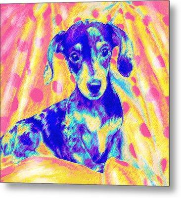 Rainbow Dachshund Metal Print by Jane Schnetlage