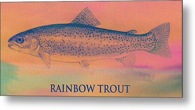 Rainbow Trout Metal Print by Dan Sproul