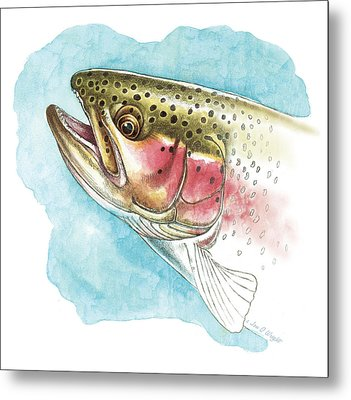 Rainbow Trout Study Metal Print by JQ Licensing