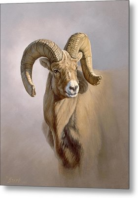 Ram Portrait Metal Print by Paul Krapf