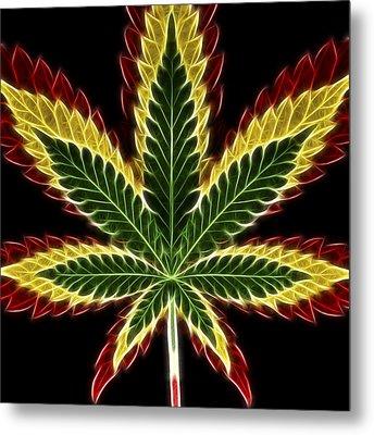 Rasta Marijuana Metal Print by Adam Romanowicz